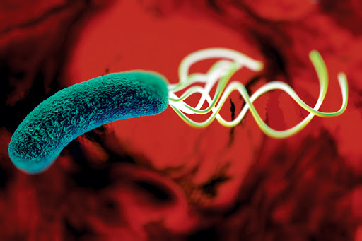 Helicobacter Pylori also known as H. Pylori